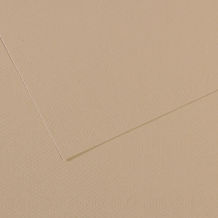Papel Mi-Teintes Canson 343 50x65cm Cinza