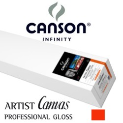 Artist Canvas Professional Gloss