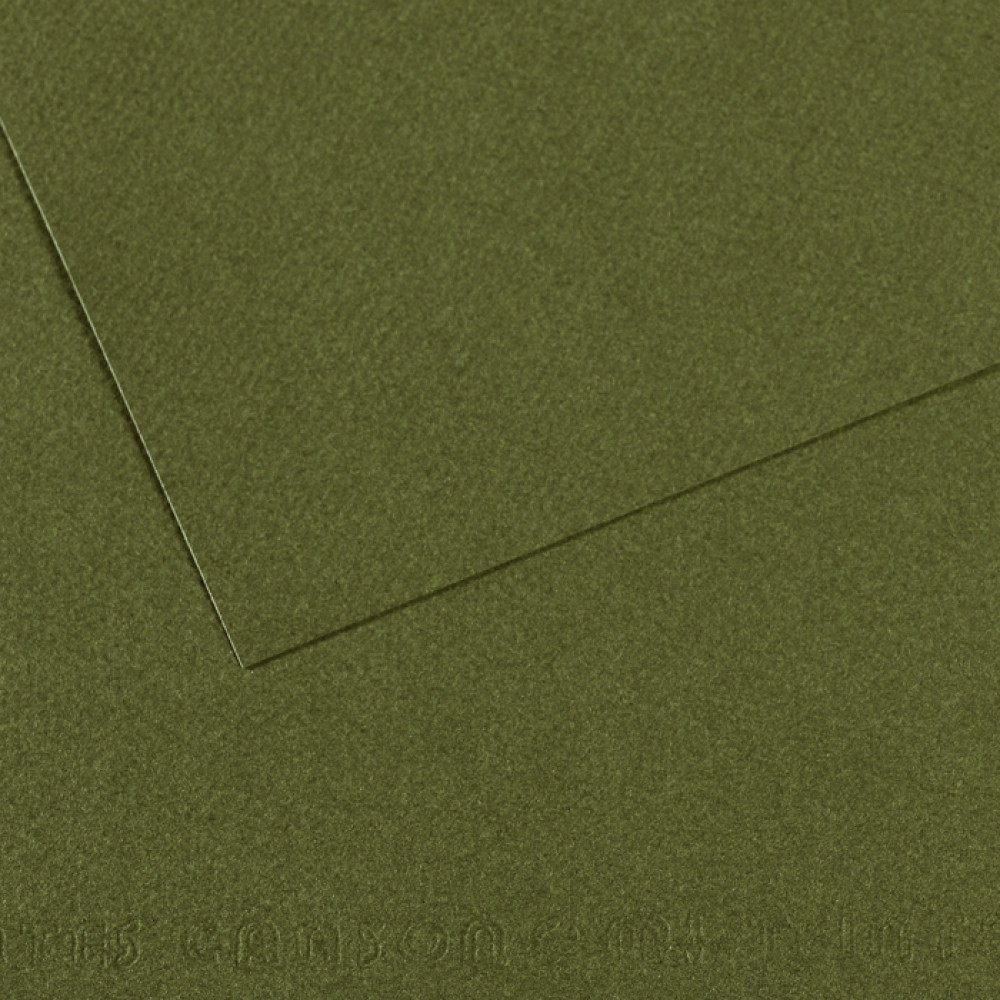 Papel Mi-Teintes Canson 50x65cm 448 Verde Mar