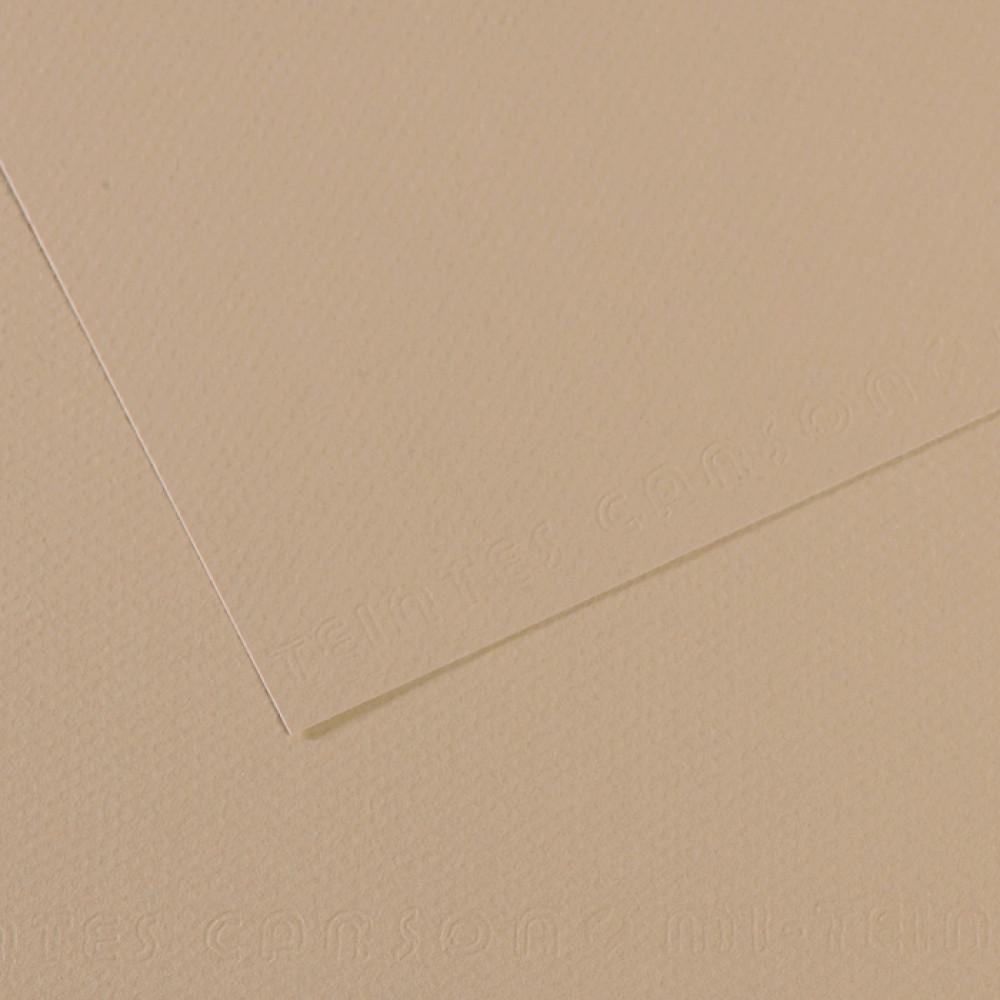 Papel Mi-Teintes Canson 50x65cm 343 Cinza