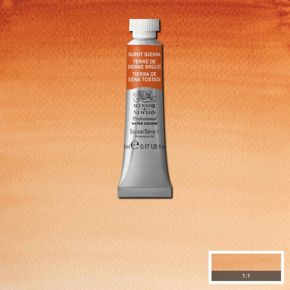 Tinta Aquarela Winsor & Newton Profissional Tubo 5ml S1 074 Burnt Sienna
