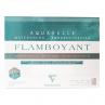 Papel Para Aquarela Clairefontaine Flamboyant 300g/m² 24X32cm
