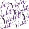 Tinta de Caligrafia Winsor & Newton 30ml Violet
